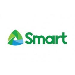 Smart 15